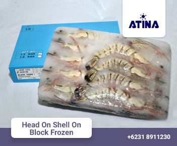 Head On Shell On Block Frozen